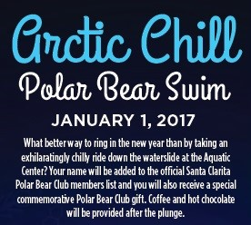 Fun Friday: Arctic Chill Polar Bear Swim